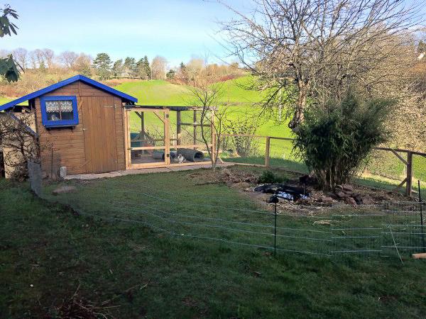 Cabane de jardin servant d'abri pour lapin