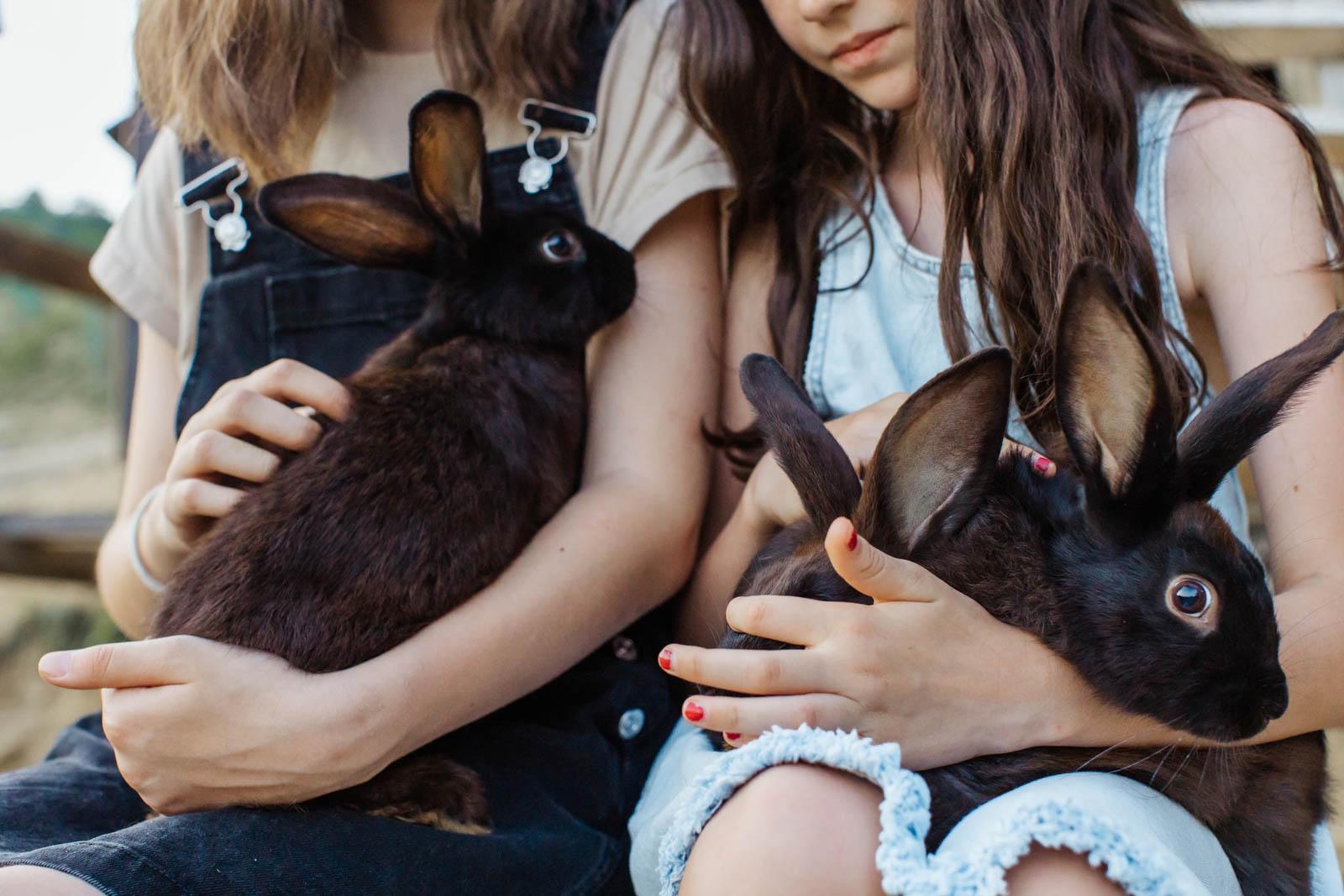 Deux lapins dans les bras d'enfants