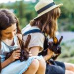Enfants avec des lapins dans les bras